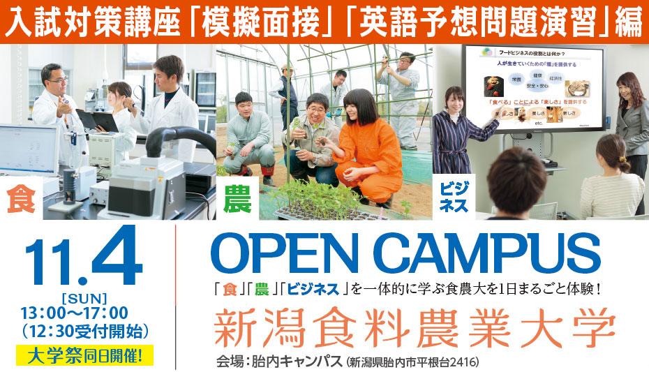 11/4(日)オープンキャンパス開催!
